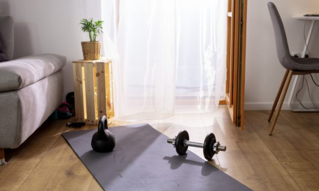 5 Best Air Purifiers for Your Home Gym